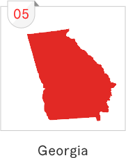 Georgia has the fifth most number of submissions with 124 causes