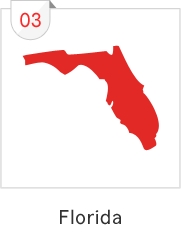 Florida has the third most number of submissions with 16 causes